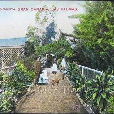 Postales: POSTAL CANARIAS LAS PALMAS JARDIN DE CORVO - MOYA . CA AÑO 1905 .. Lote 31969837