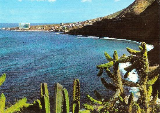 PUNTA DE HIDALGO (TENERIFE) - ED. BEASCOA Nº 2589 - NUEVA (Postales - España - Canarias Moderna (desde 1940))