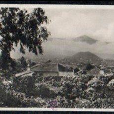 Postales: TARJETA POSTAL DE TENERIFE - VALLE ORATAVA. 213. FOTO - CENTRAL.. Lote 32457250