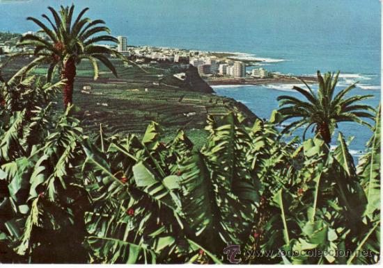 PAISAJE DEL VALLE Y PLANTACIONES DE BANANAS. TENERIFE. ISLAS CANARIAS. ESPAÑA. RASTRILLO PORTOBELLO (Postales - España - Canarias Moderna (desde 1940))