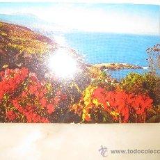 Postales: COSTA DEL NORTE TENERIFE I. CANARIAS T8. Lote 32855148