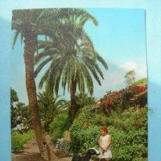 Postales: ISLAS CANARIAS.. Lote 32904030