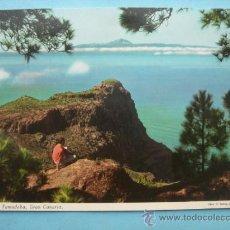 Postales: PINAR DE TAMADABA. GRAN CANARIA. Lote 32922094