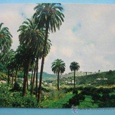 Postales: SANTA BRÍGIDA. GRAN CANARIA. Lote 32933397