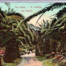 Postales: TARJETA POSTAL LOS FRAILES, GRAN CANARIA, LAS PALMAS. Lote 33204485