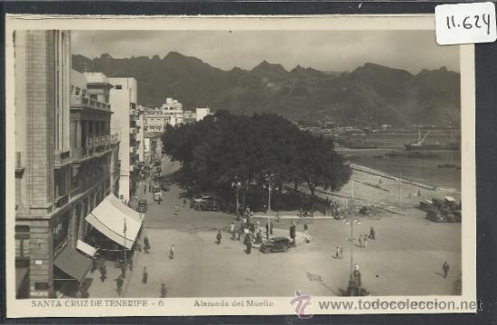 SANTA CRUZ DE TENERIFE - 6 - ALAMEDA DEL MUELLE - EDICIONES ARRIBAS - (11.624) (Postales - España - Canarias Antigua (hasta 1939))