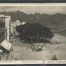 Postales: SANTA CRUZ DE TENERIFE - 6 - ALAMEDA DEL MUELLE - EDICIONES ARRIBAS - (11.624). Lote 34083171