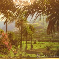 Postales: GRAN CANARIA (ISLAS CANARIAS),VALLE DE AGAETE, CIRCULADA T2633. Lote 34652602
