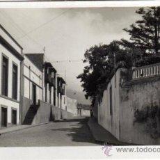 Postales: BONITA POSTAL - PUERTO DE LA CRUZ (TENERIFE) - SANTO DOMINGO . Lote 35214848
