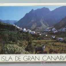Postales: POSTAL DE GRAN CANARIA, ISLAS CANARIAS. AÑO 1986. VALLE DE AGAETE. 1175. . Lote 35303151