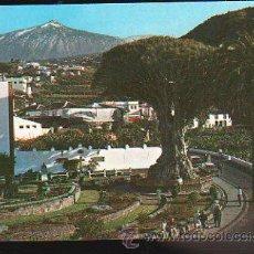 Postales: TARJETA POSTAL DE TENERIFE - ICOD DE LOS VINOS. EL DRAGO MILENARIO. Nº 243. Lote 35492429