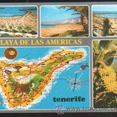 Postales: TARJETA POSTAL DE TENERIFE - PLAYA DE LAS AMERICAS. 110. EDICIONES GASTEIZ. Lote 35493396