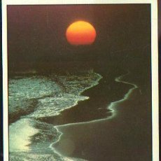 Postales: TARJETA POSTAL DE ISLAS CANARIAS. 25. EDITA IMAGINA S.L. Lote 35493444