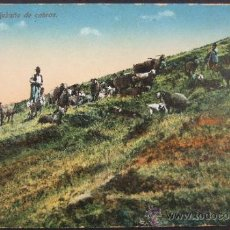 Postcards - Tenerife - Rebaño de Cabras - Norbrega's English Bazar - 133573342