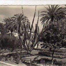 Postales: LAS PALMAS DE GRAN CANARIA. 202 PARQUE DORAMAS. ED ARRIBAS. SIN CIRCULAR.. Lote 35976424