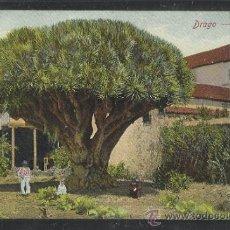 Postales: DRAGO - LAGUNA - REVERSO SIN DIVIDIR - (13.655). Lote 36147207