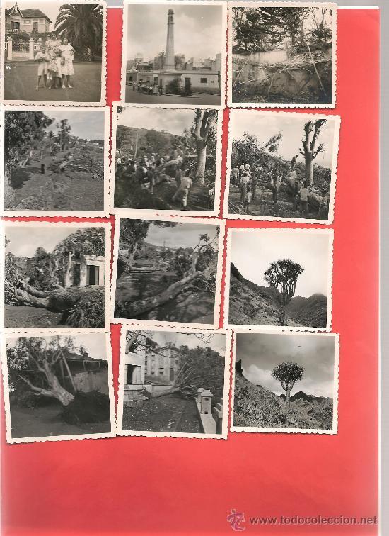 24 FOTOGRAFÍAS BREÑA ALTA S.C. DE LA PALMA, ALGUNAS DATOS CAMINEROS, IGNESTA ... ... (Postales - España - Canarias Antigua (hasta 1939))