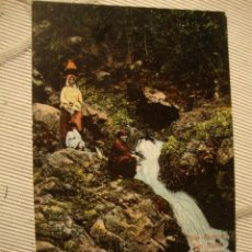 Postales: ANTIGUA FOTOGRAFIA POSTAL COLOREADA LAS PALMAS G. CANARIAS, 100X100 ORIGINAL DE P.P.S.XX, 1915. Lote 37473362