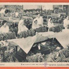 Postales: TENERIFE - EMPAQUETADO DE PLATANOS - FOTO: E. BAENA - VERDOSA - SIN CIRCULAR - AÑO 1939/ 40. Lote 37531274