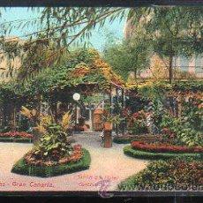 Postales: TARJ. POSTAL DE LAS PALMAS - JARDIN DEL HOTEL CONTINENTAL. 2566. Lote 37581383