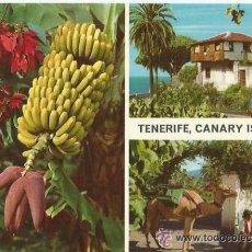 Postales: == PH649 - POSTAL - TENERIFE - CANARY ISLANDS - SIN CIRCULAR. Lote 38130629