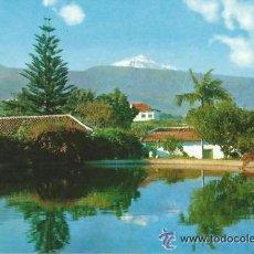 Postales: == PH650 - POSTAL - TENERIFE - PAISAJE, AL FONDO EL TEIDE - SIN CIRCULAR. Lote 38130648