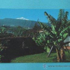 Postales: PAISAJE CON EL TEIDE. PUERTO DE LA CRUZ. TENERIFE. Lote 38435708