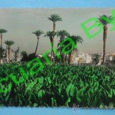 Postales: LAS PALMAS DE GRAN CANARIA. ED. LUJO. Lote 38652362