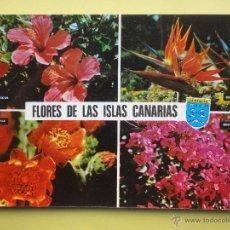Postales: FLORES DE LAS CANARIAS. DIST. GLOBAL TRADERS. Lote 39595510