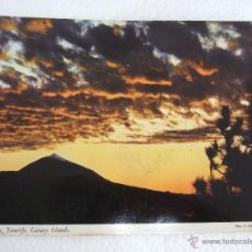 Postales: POSTAL CANARIAS - TENERIFE - EL TEIDE - SIN CIRCULAR. Lote 39989243