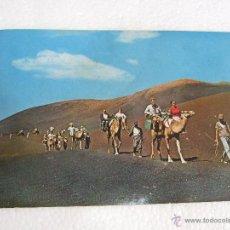 Postales: POSTAL CANARIAS - LANZAROTE - CARAVANA DE CAMELLOS - 1967 - SIN CIRCULAR. Lote 39989475