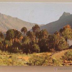 Postales: POSTAL DE GRAN CANARIA. AÑO 1980. TIPISMO CANARIO 6. Lote 40688059