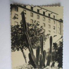 Postales: LAS PALMAS DE GRAN CANARIA PARQUE DE SAN TELMO RINCON 58. Lote 43300722