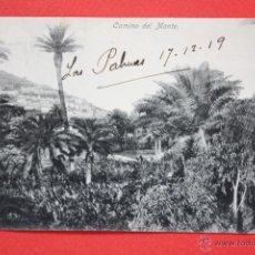 Postales: ANTIGUA POSTAL DE LAS PALMAS. GRAN CANARIA. CAMINO DEL MONTE. CIRCULADA. Lote 45145017
