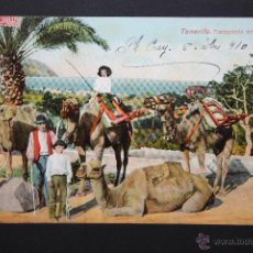 Postales: ANTIGUA POSTAL DE TENERIFE. TRANSPORTE EN CAMELLOS. CIRCULADA. Lote 46050749