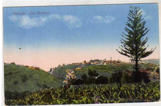 TENERIFE. LOS REALEJOS. SIN CIRCULAR. (Postales - España - Canarias Antigua (hasta 1939))