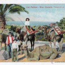 Postales: LAS PALMAS. GRAN CANARIA. TRANSPORTE EN CAMELLOS. FRANQUEADA EN EL AÑO 1910.. Lote 47287360