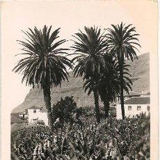 Postales: POSTAL FOTOGRAFICA ISLA DE LA PALMA SANTA CRUZ DE LA PALMA MOTIVO Nº 14 . Lote 47608959