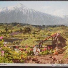 Cartes Postales: (28458)POSTAL SIN CIRCULAR,A LO LEJOS SE VE EL TEIDE,TENERIFE ,CANARIAS,CANARIAS,CONSERVACION,VER FO. Lote 48765504