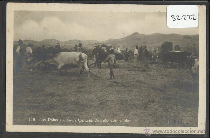 LAS PALMAS - 118 - ARANDO - FOTOGRAFICA BAZAR ALEMAN - VER REVERSO - (32222) (Postales - España - Canarias Antigua (hasta 1939))