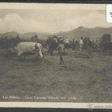 Postales: LAS PALMAS - 118 - ARANDO - FOTOGRAFICA BAZAR ALEMAN - VER REVERSO - (32222). Lote 49201506