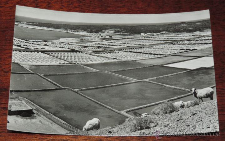FOTO POSTAL DE LANZAROTE, SALINAS DEL JANUBIO, FOTO GABRIEL FERNANDEZ, NO CIRCULADA, ESCRITA. (Postales - España - Canarias Antigua (hasta 1939))