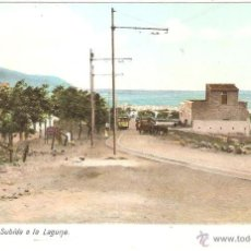 Postales - TENERIFE SUBIDA A LA LAGUNA - 43712623
