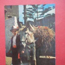 Postales: CAMPESINO CON BURRO. TENERIFE. 1962. Lote 50086941