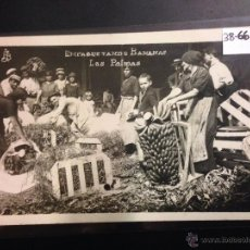 Postales: LAS PALMAS - EMPAQUETANDO BANANAS - FOTOGRAFICA - (38662). Lote 52818700