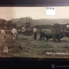 Postales: TENERIFE - JG 82 - LA LAGUNA - UNA HERA - (38816). Lote 52846942
