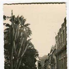 Postales: SANTA CRUZ DE TENERIFE CALLE SAN FRANCISCO. ED. ARRIBAS 28. SIN CIRCULAR. Lote 55692667