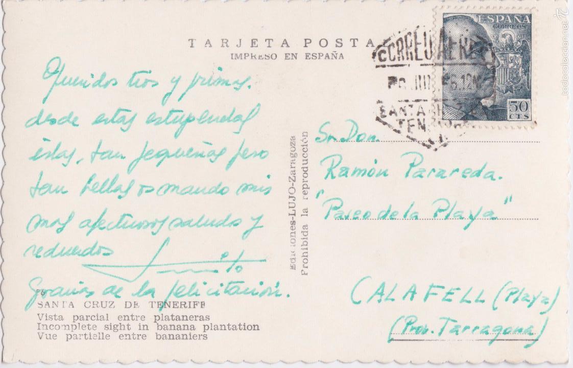 Postales: P- 5110. POSTAL SANTA CRUZ DE TENERIFE. VISTA PARCIAL ENTRE PALTANERAS. ED. LUJO. - Foto 2 - 56390725