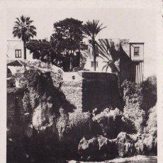 Postais: SANTA CRUZ TENERIFE PUERTO DE LA CRUZ SANTO DOMINGO FOTO CIF. Lote 56619404