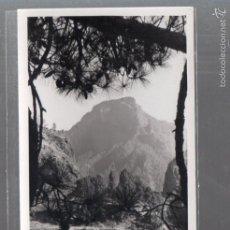 Postales: TARJETA POSTAL DE GRAN CANARIA - ISLA DE SAN MIGUEL DE LA PALMA. CALDERA DE TABURIENTE.. Lote 56711975